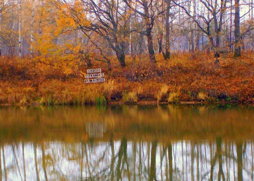Крик души поздней осенью в Ковровском районе