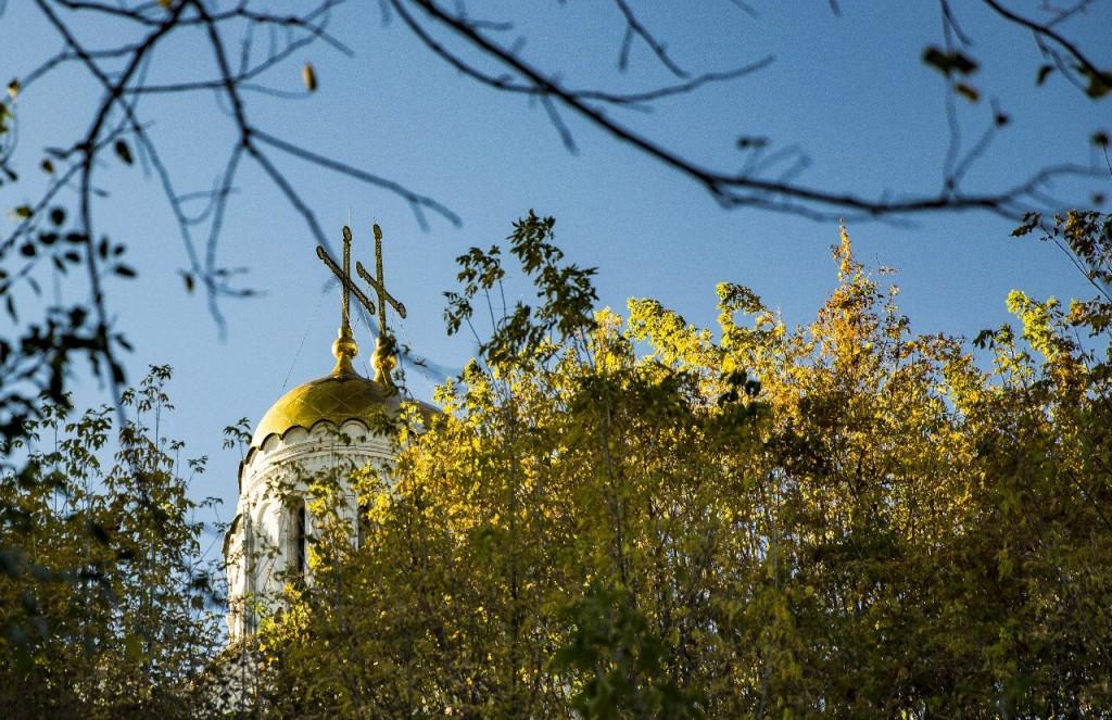Купола Владимира горят на солнце золотом!