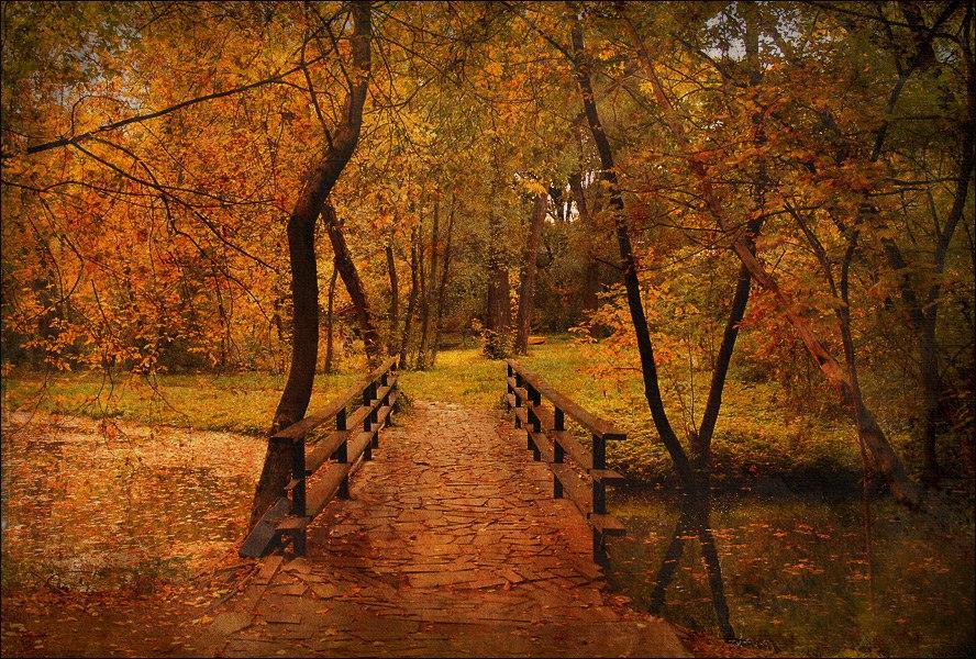 МИР В ОБЪЕКТИВЕ Осень