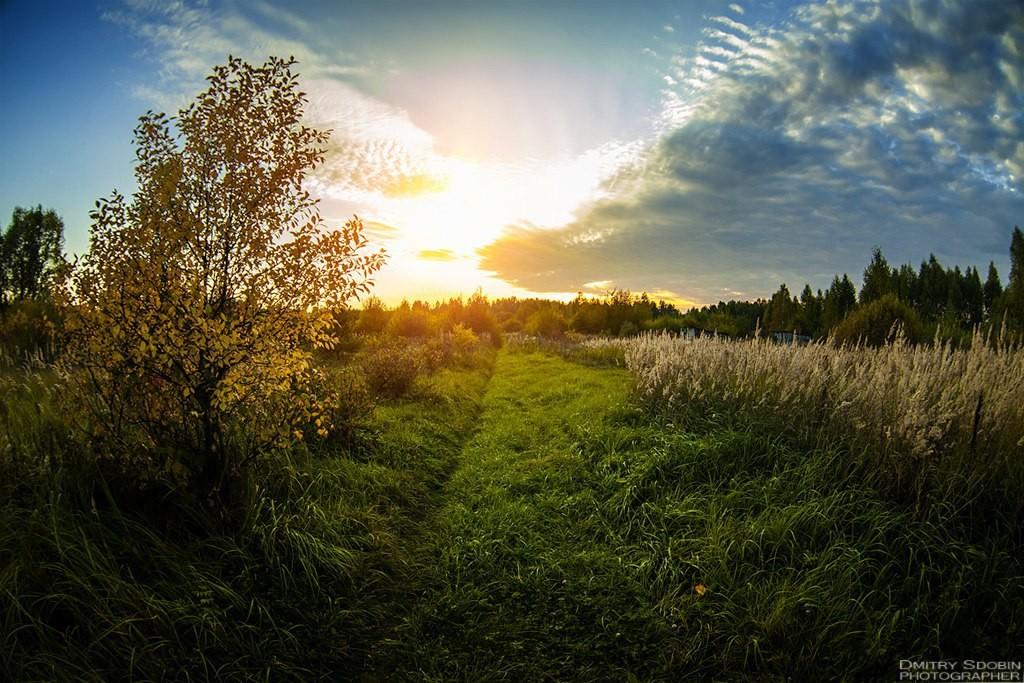 Меленковский пейзаж от Дмитрия Сдобина 01