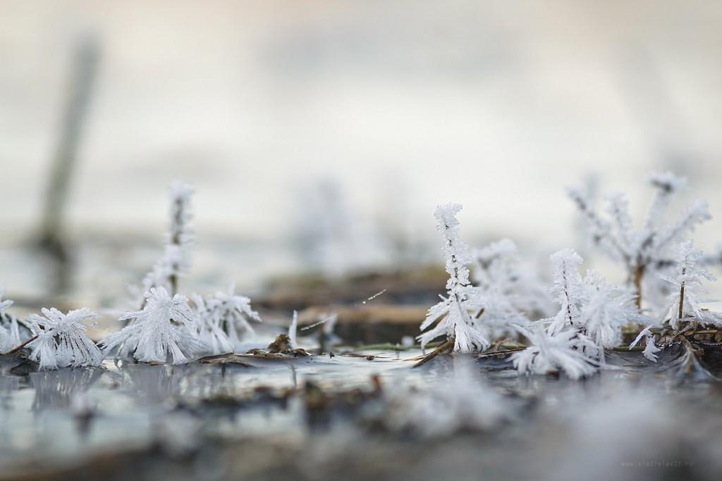 Морозное владимирское утро 02