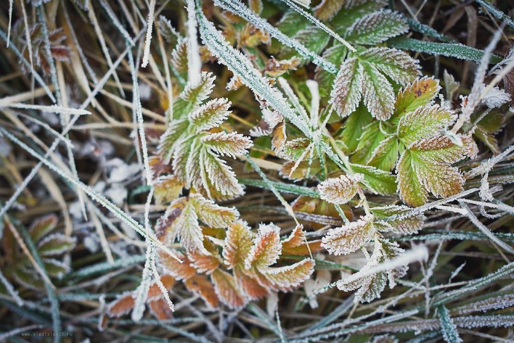 Морозное владимирское утро 05