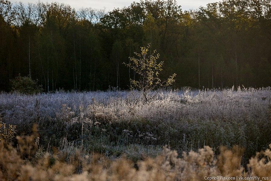 Морозное утро в Клязьменской пойме 04