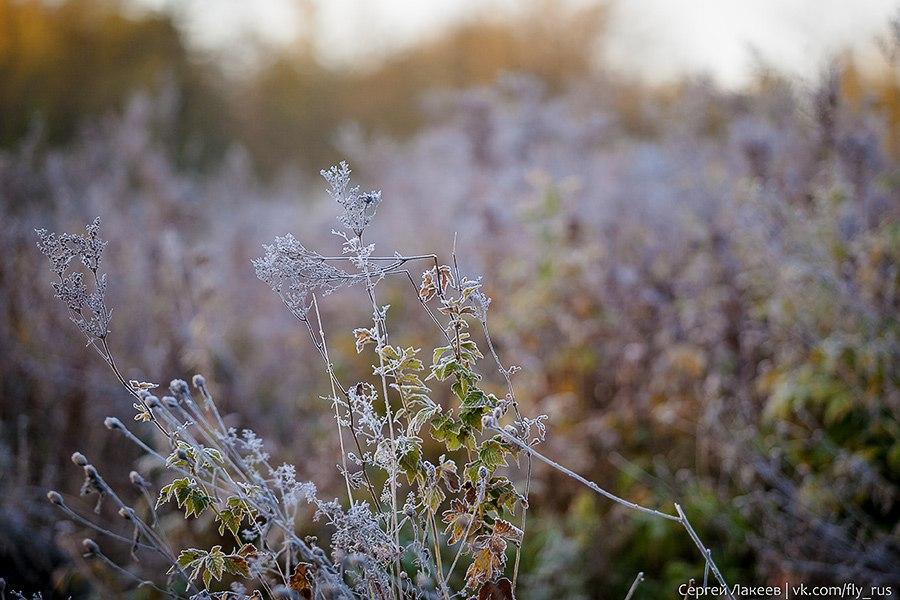 Морозное утро в Клязьменской пойме 06