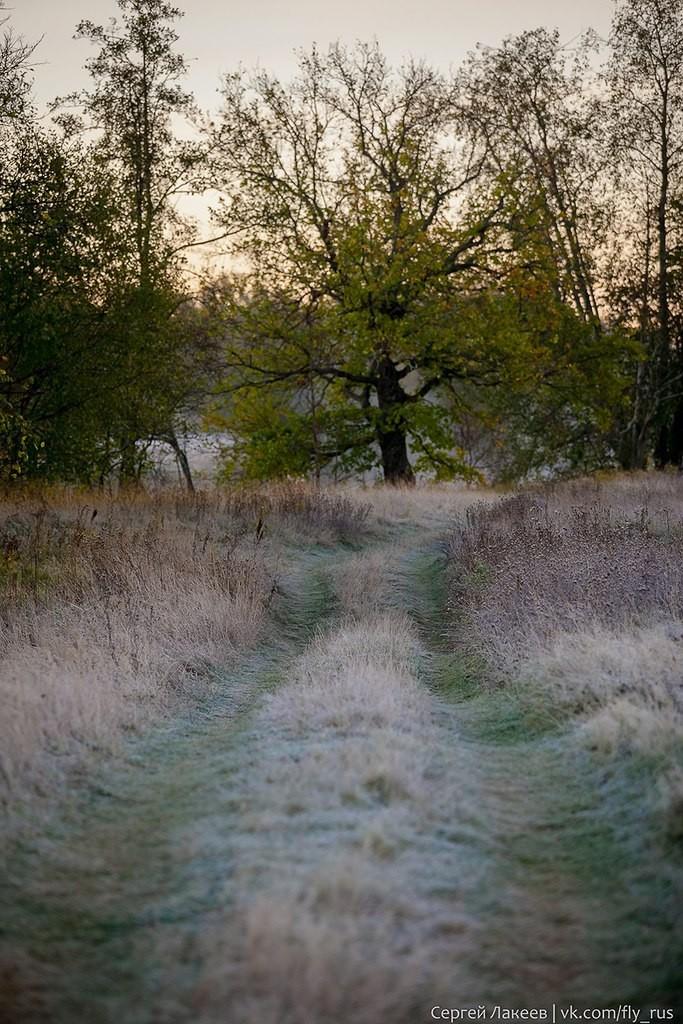 Морозное утро в Клязьменской пойме 08