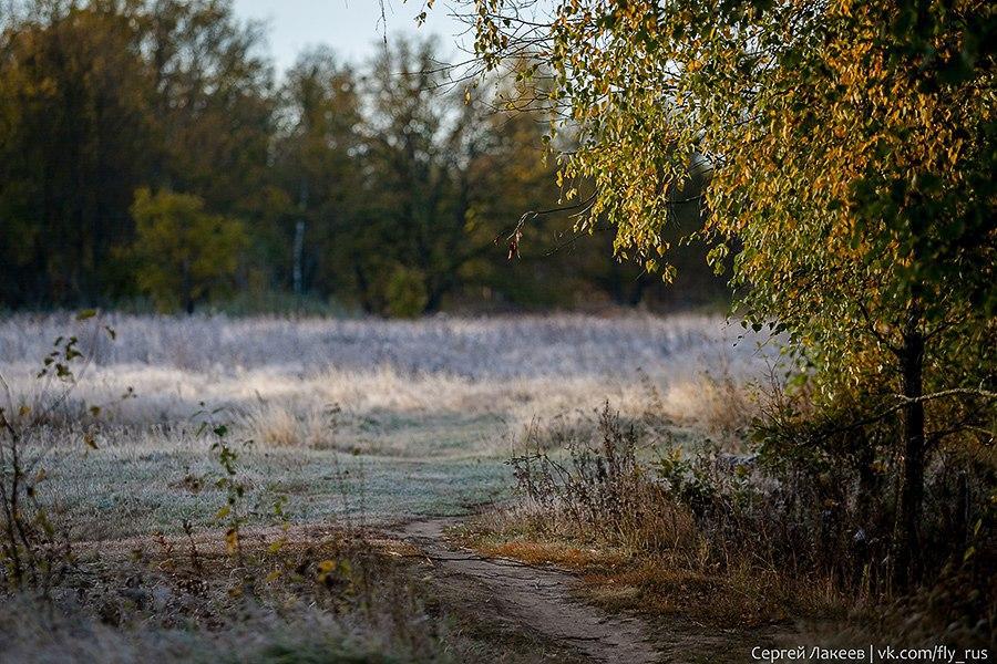 Морозное утро в Клязьменской пойме 09