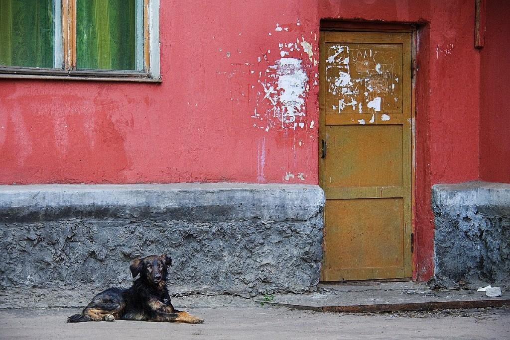 Муромские окошки от Алексея Трифонова 09