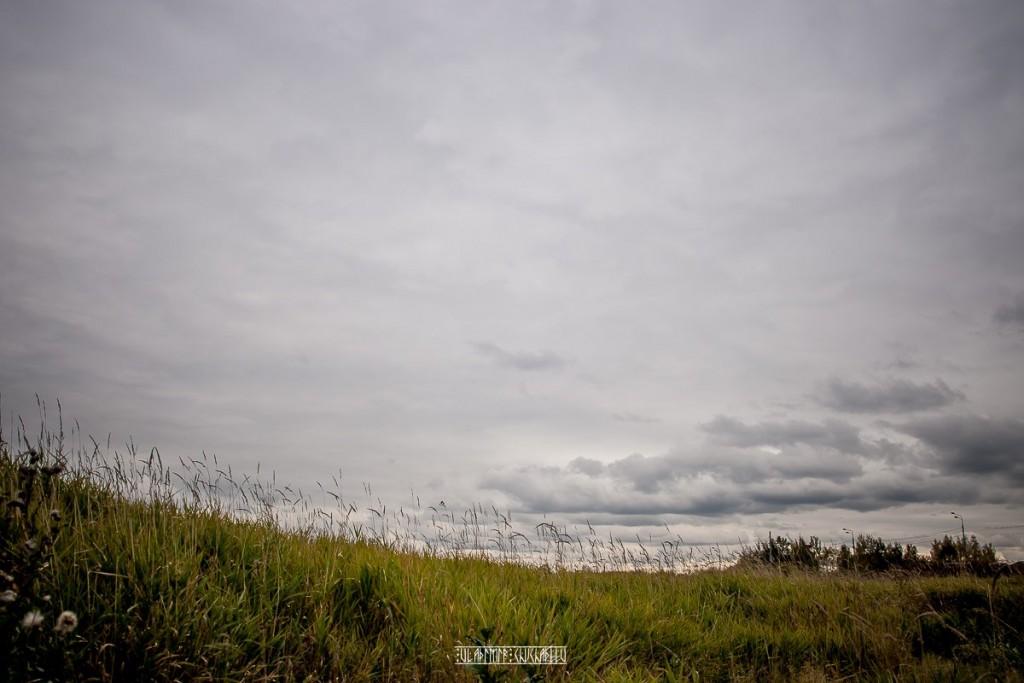 На природе близ Владимира 01