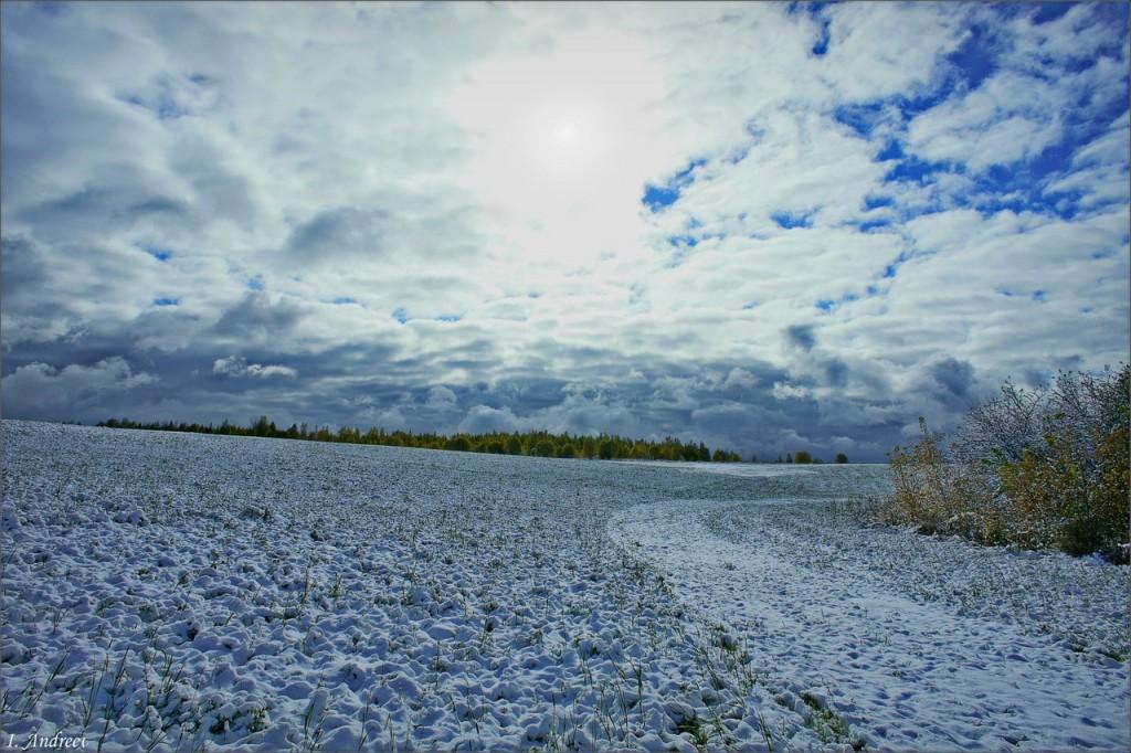 Октябрьским утром, после первого снега. (Суздальский район, 09.10.2015)