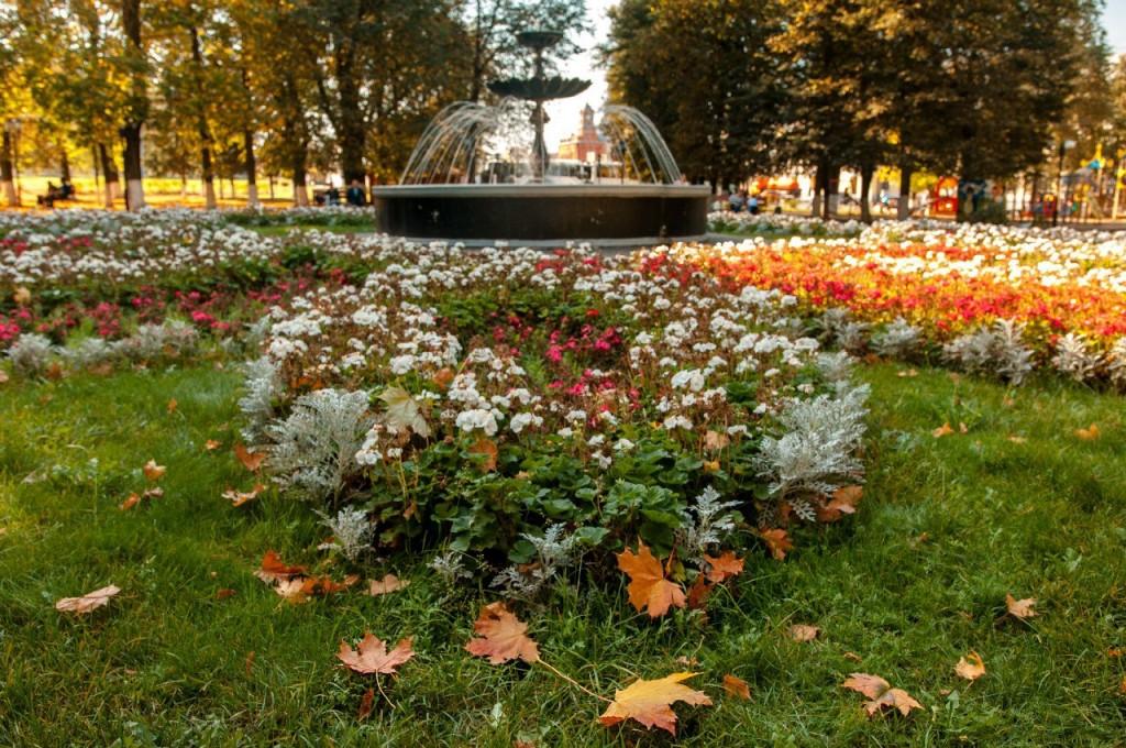 Осенний Парк Пушкина (Владимир) 10