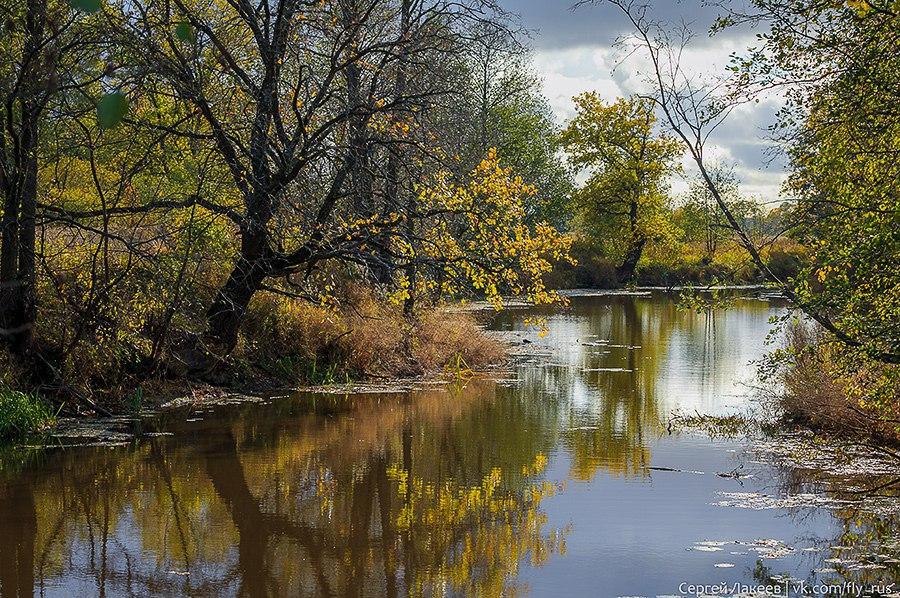 Осень в Клязьменской пойме 05