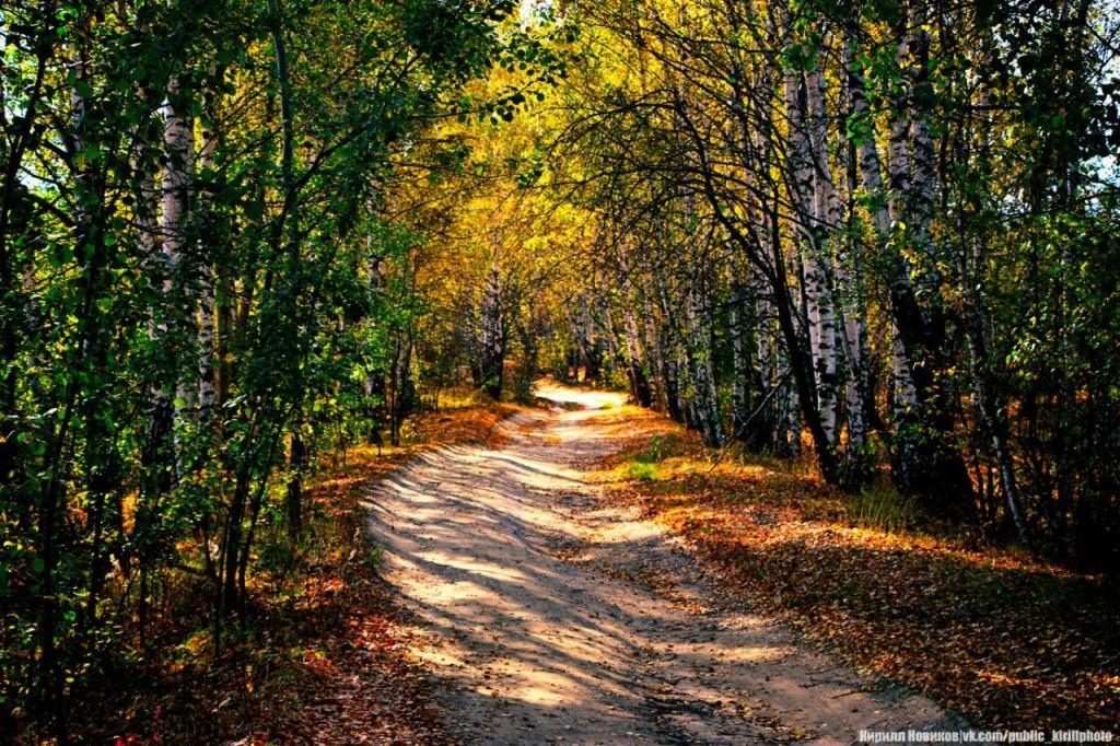 Осень в Собинском районе 02