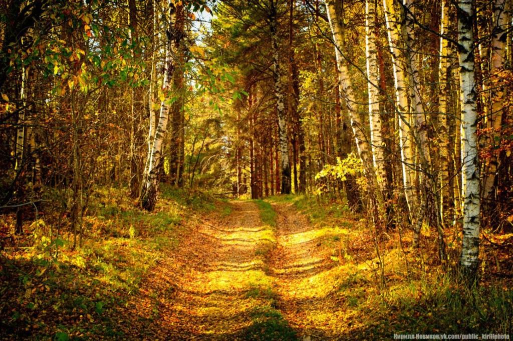 Осень в Собинском районе 03