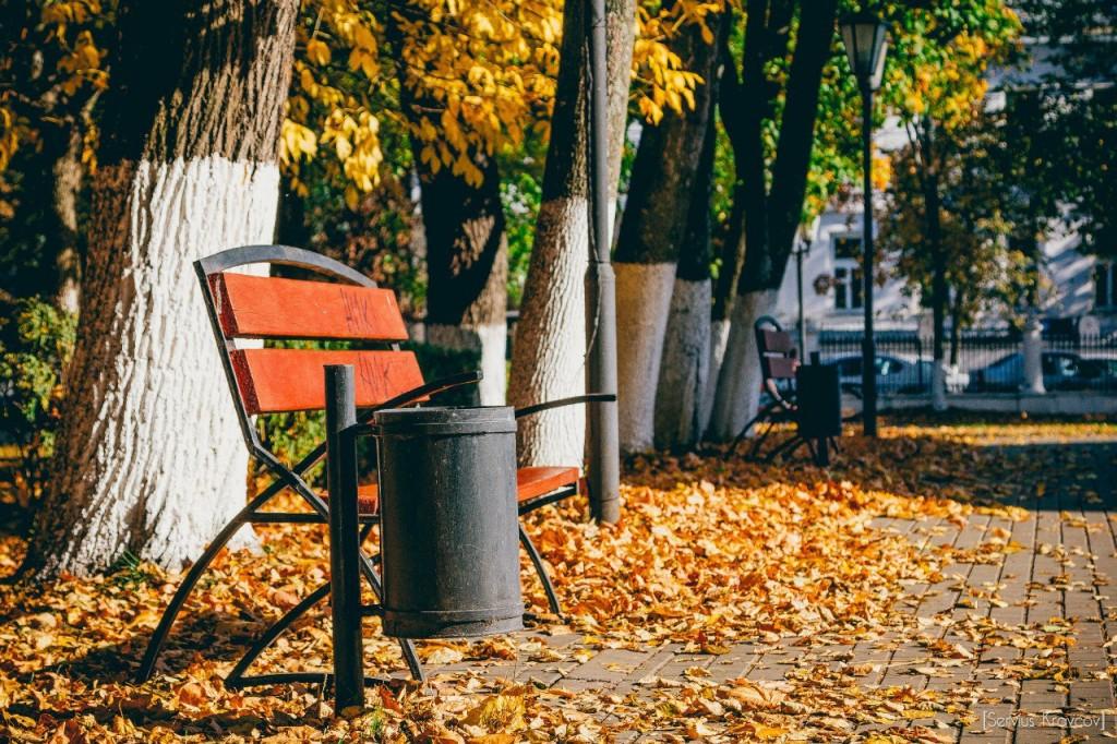 Осень 2015 (листья, пейзажи и все такое) 03
