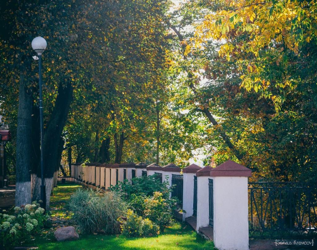 Осень 2015 (листья, пейзажи и все такое) 05