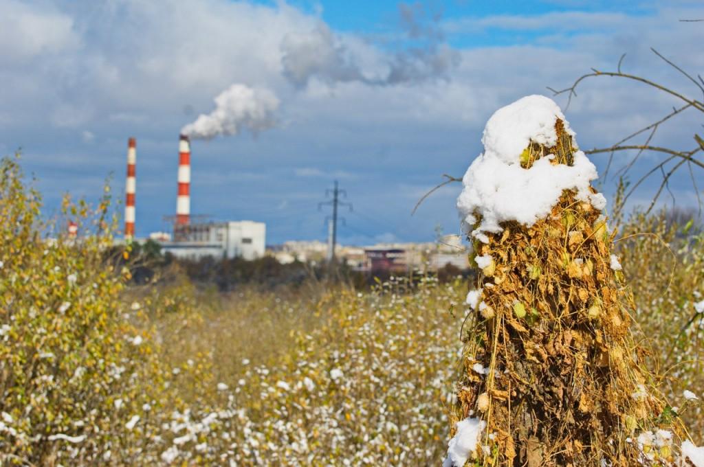 Первый снег во Владимире 08