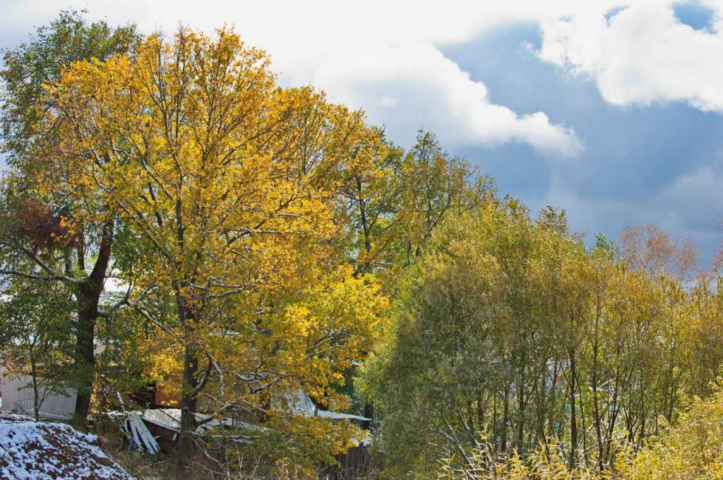 Первый снег во Владимире 09
