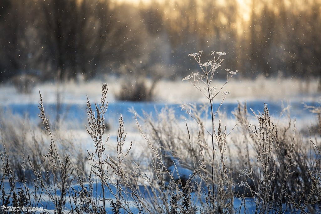Первый снег в Муроме 02