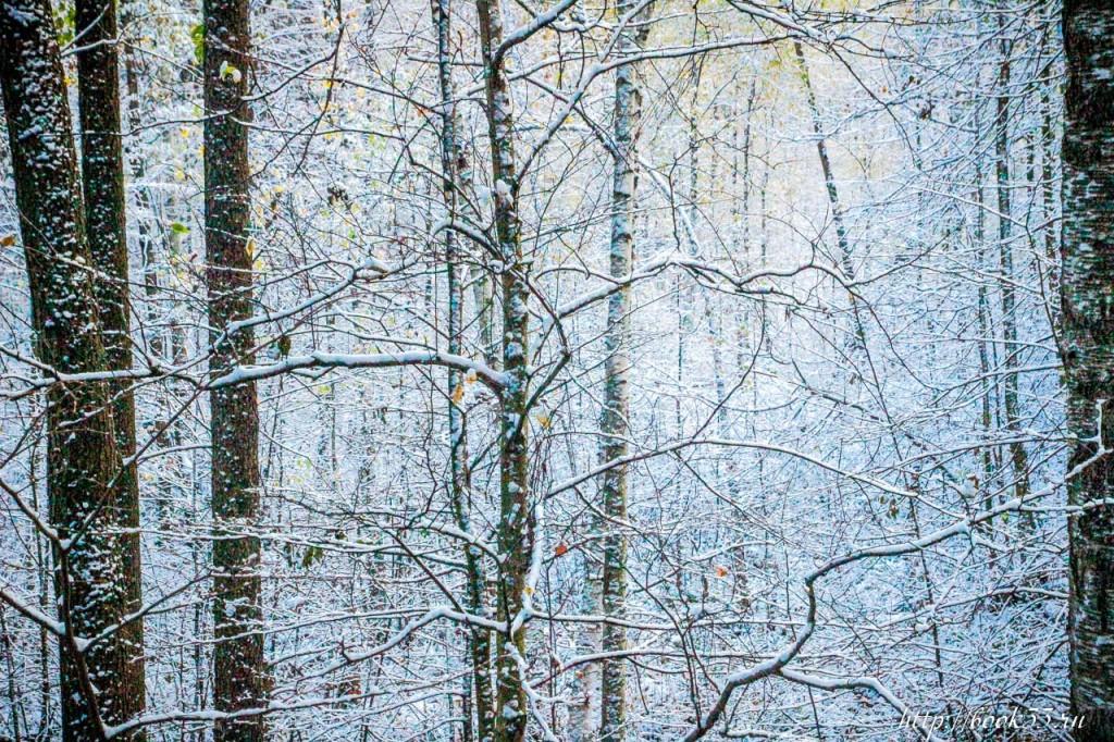 Первый снег на Вербовском 05
