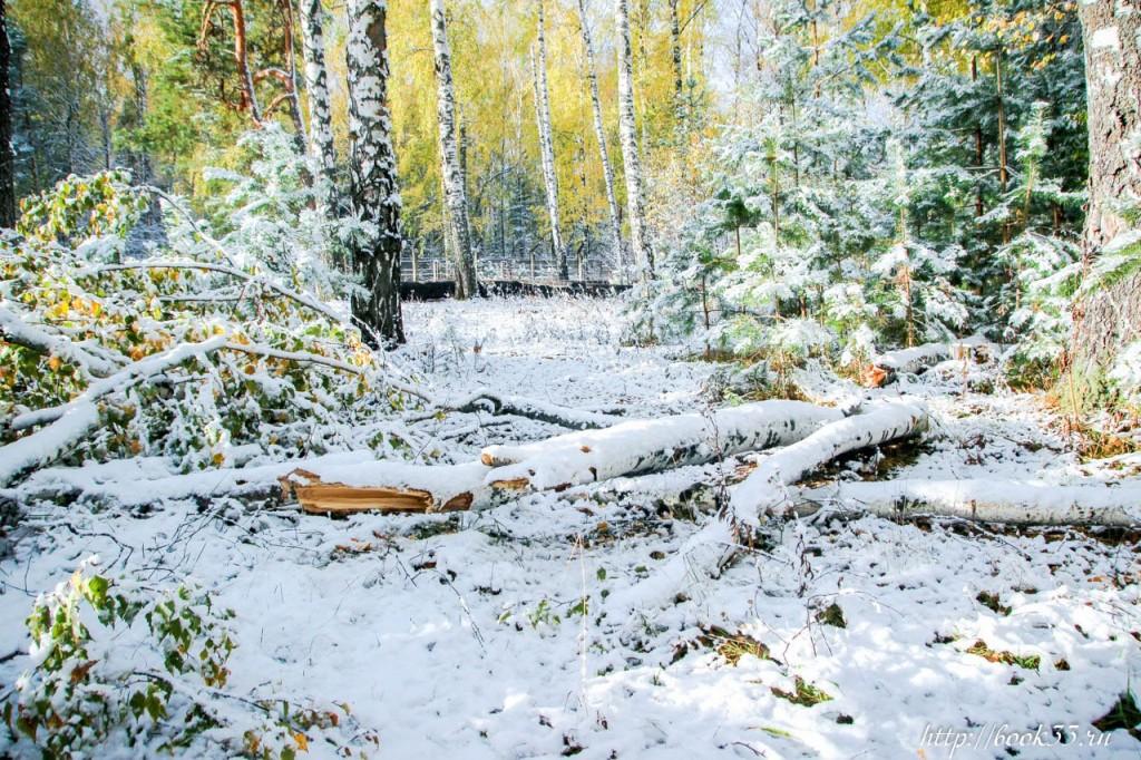 Первый снег на Вербовском 10