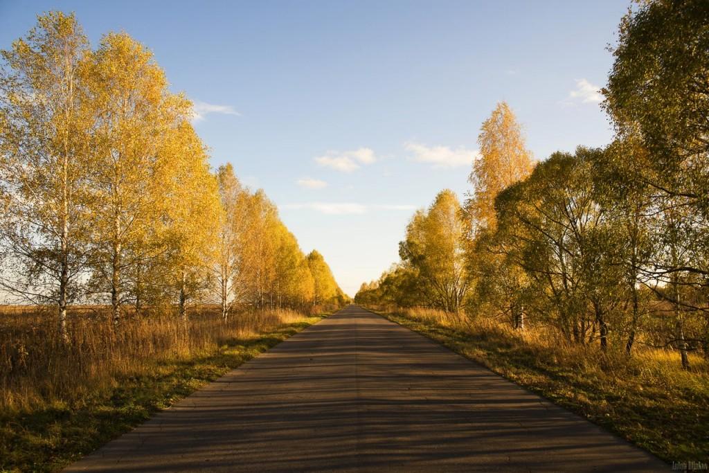 По дороге в с. Григорьево, Гусь-Хрустальный р-н 01