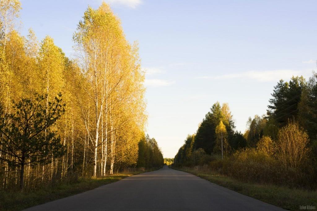 По дороге в с. Григорьево, Гусь-Хрустальный р-н 02