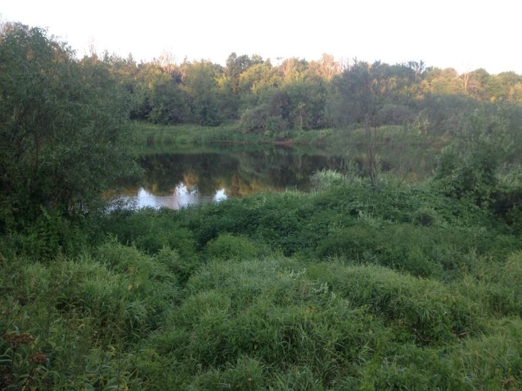 По реке Клязьме 19