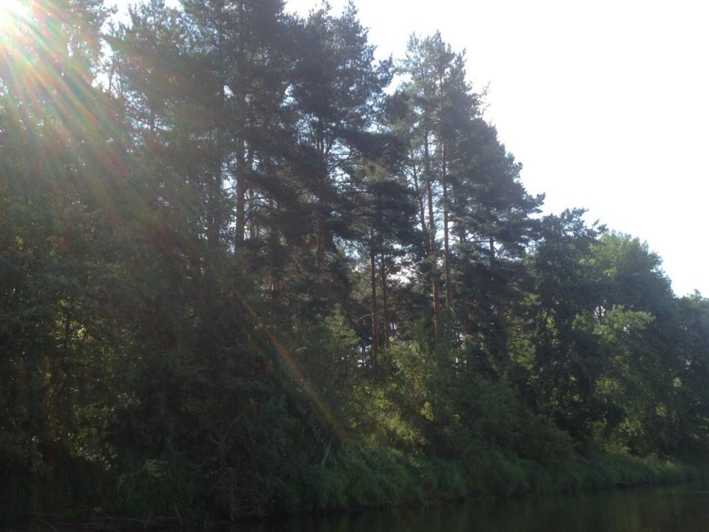 По реке Клязьме 20