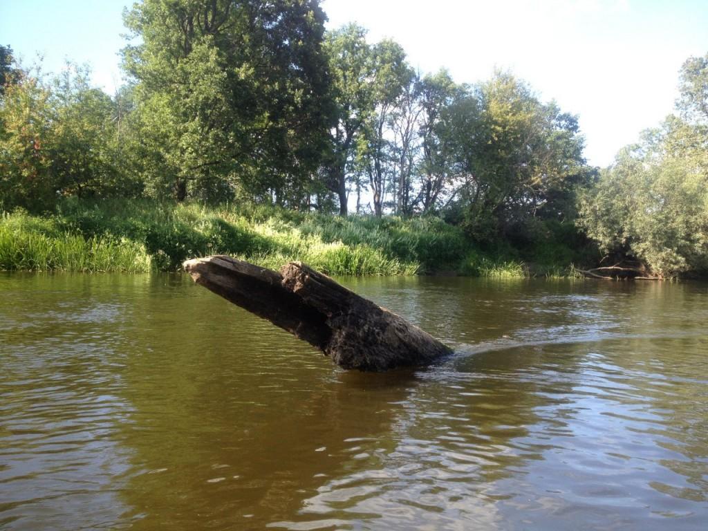 По реке Клязьме 29