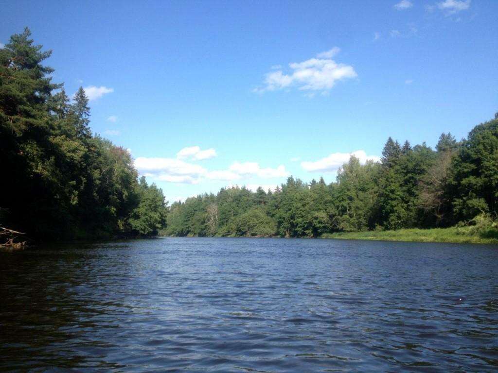 По реке Клязьме 33