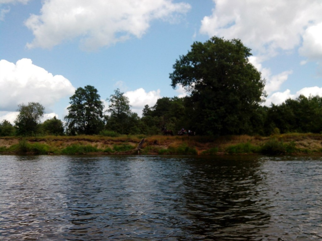 По реке Клязьме 43