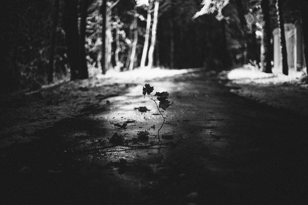 Прогулки по вечернему Владимиру 07