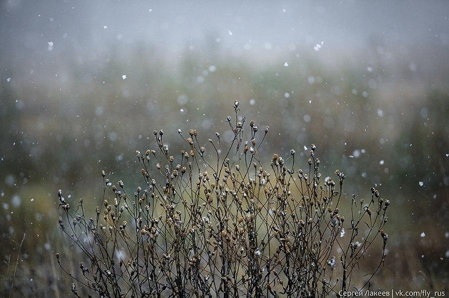 Снежная прогулка в окресностях Владимира 01