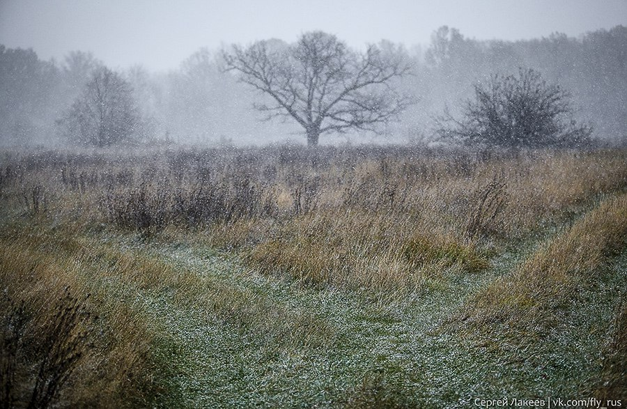 Снежная прогулка в окресностях Владимира 06