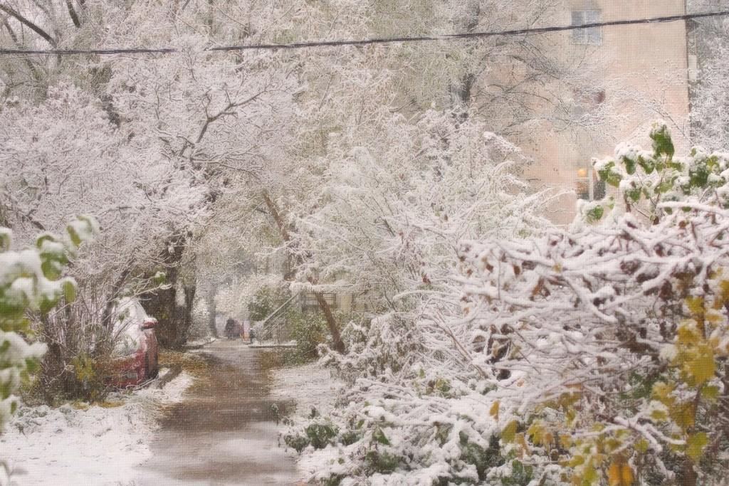 Снежные картины 04