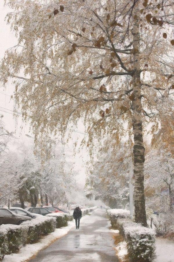 Снежные картины 07