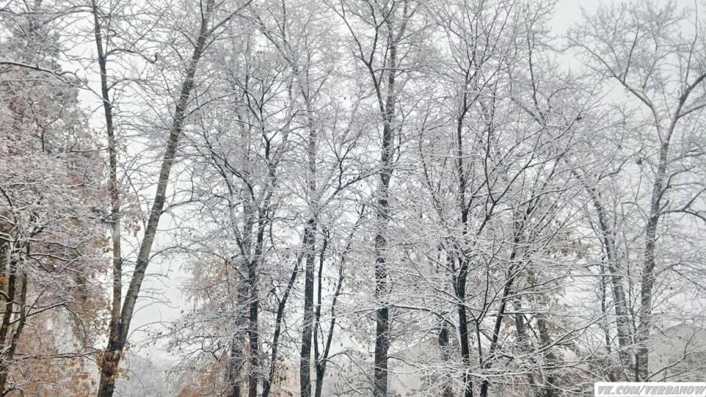 Снежок в теплый день на Вербовском 03