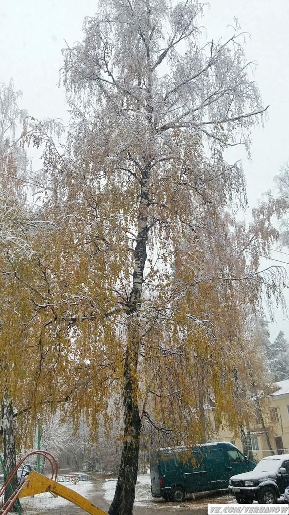 Снежок в теплый день на Вербовском 04