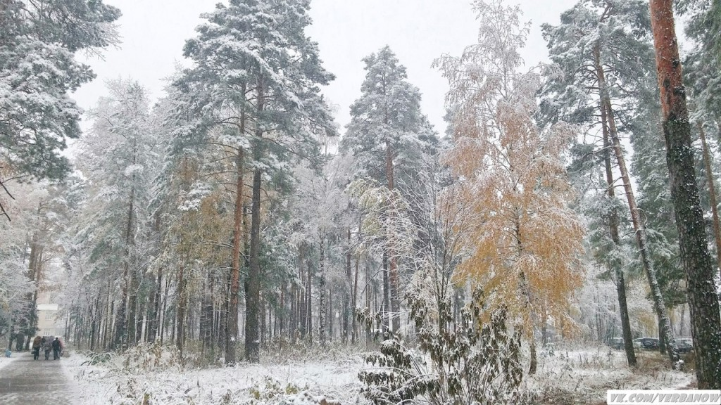 Снежок в теплый день на Вербовском 05