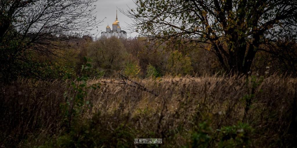 Холодная осень в Клязьменской пойме 02