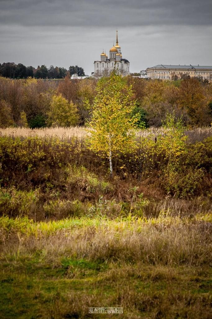 Холодная осень в Клязьменской пойме 10