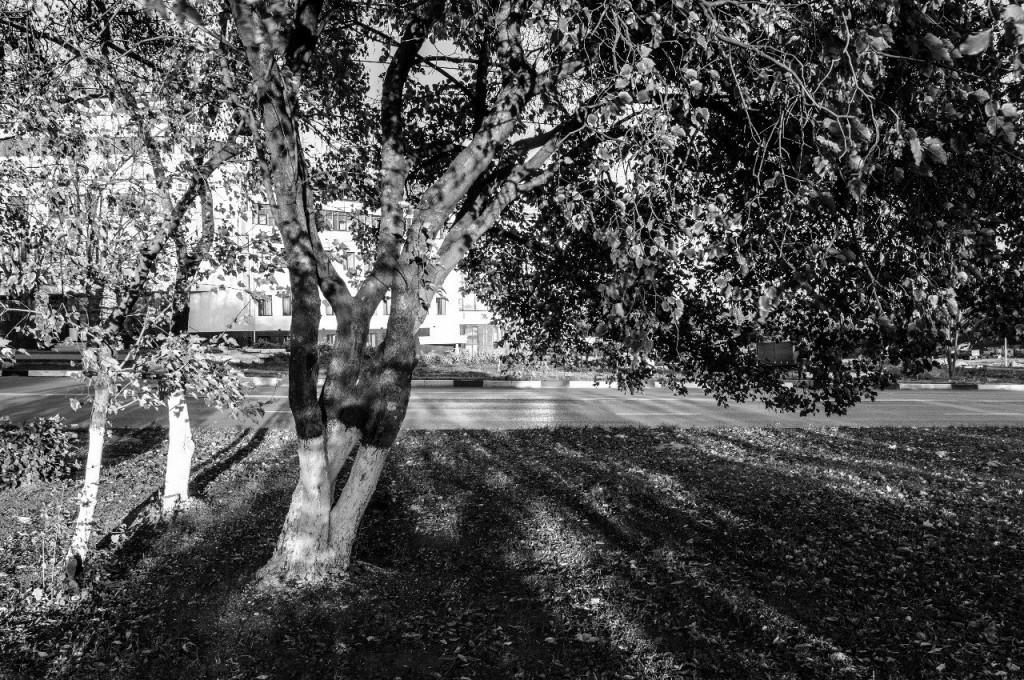Черно-белый Владимир в фотографиях Бориса Пучкова 05