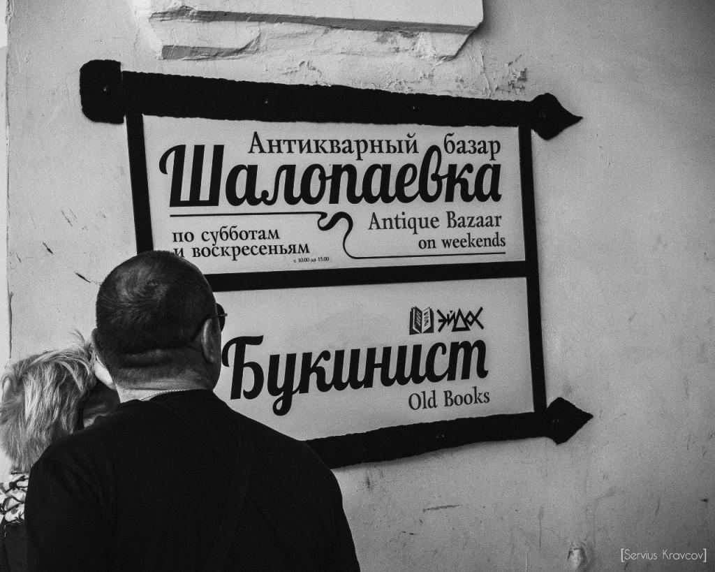 Шалопаевка 09