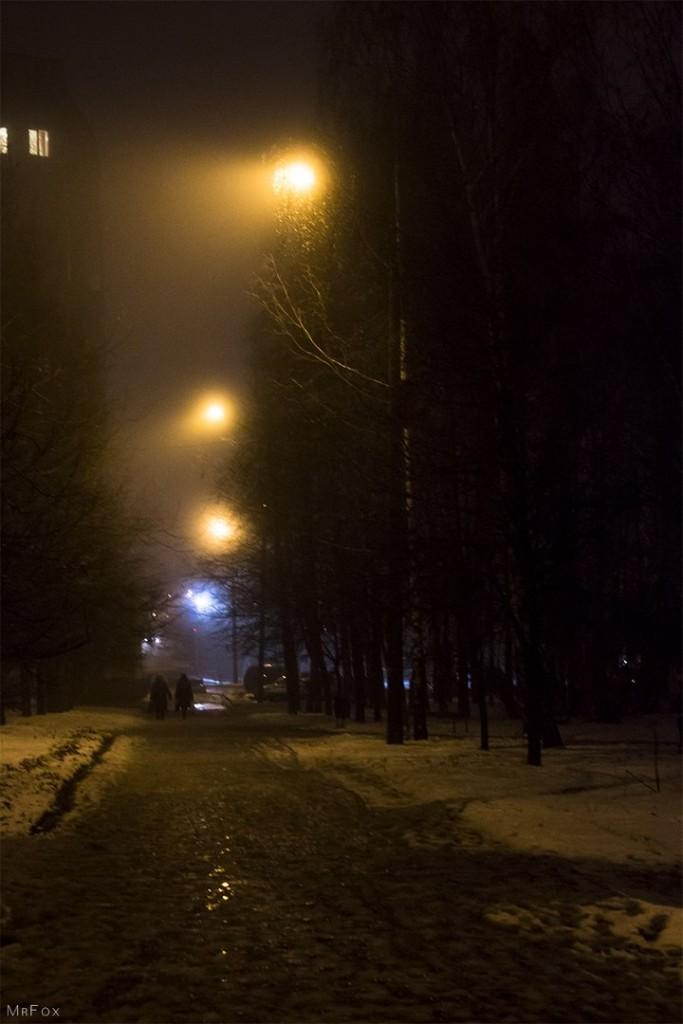 Владимир в тумане (20.11.2015) 04