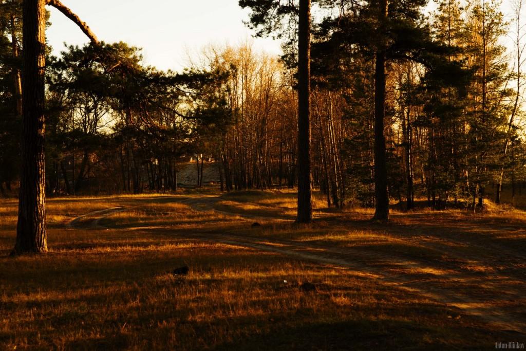 В осеннем лесу 01