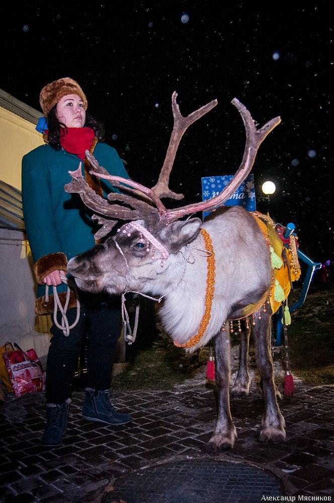 День Рождения Деда Мороза во Владимире 01