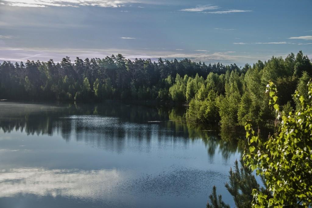 Любимое место отдыха жителей и гостей города Петушки © Alleg