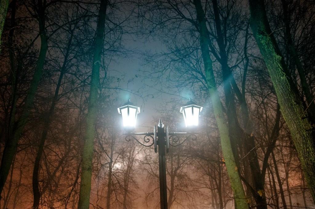 Ноябрьские туманы во Владимире 40