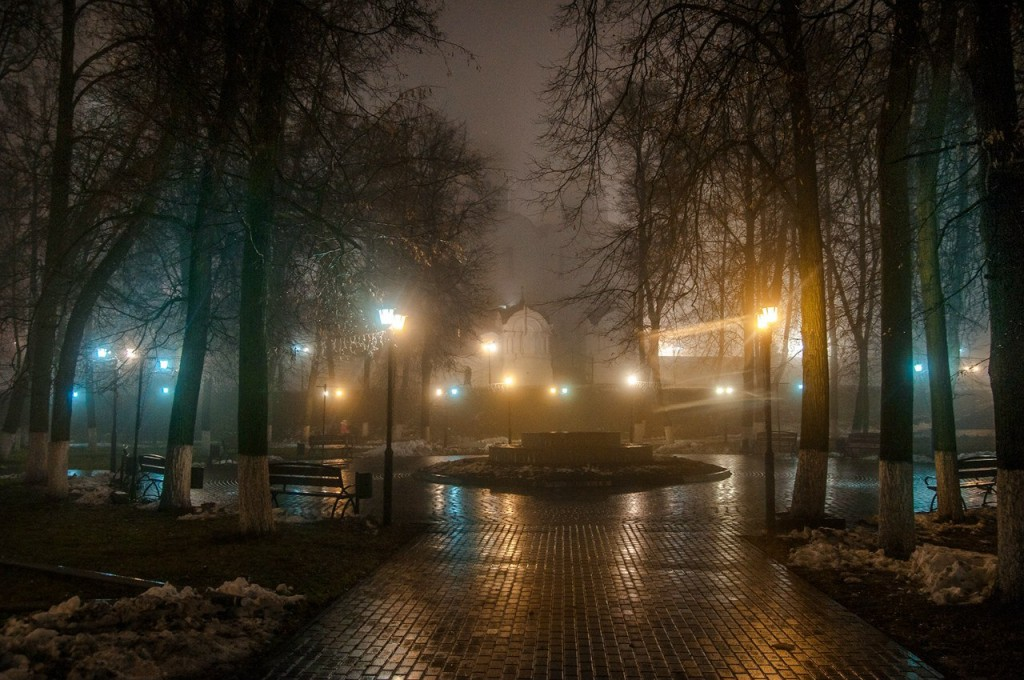 Ноябрьские туманы во Владимире 41