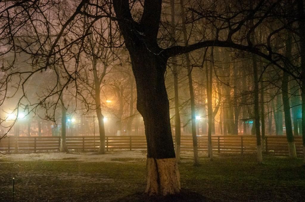 Ноябрьские туманы во Владимире 42